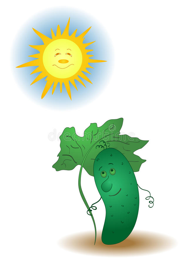 Gurke und die Sonne lizenzfreie abbildung