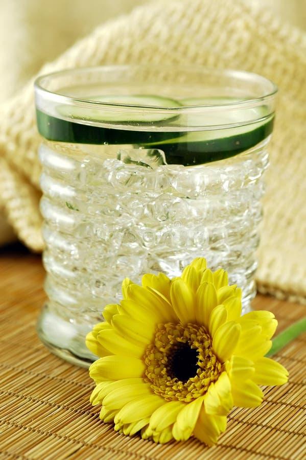 Gurke-Wasser stockbild