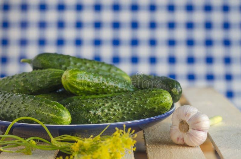 Gurken mit Pickeln auf der Platte mit Schottenstoffhintergrund lizenzfreies stockbild