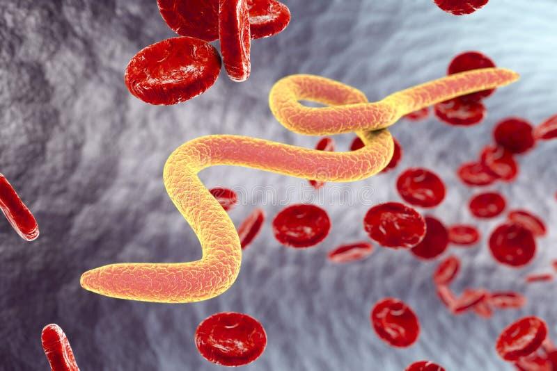 Gusanos parásitos en sangre ilustración del vector