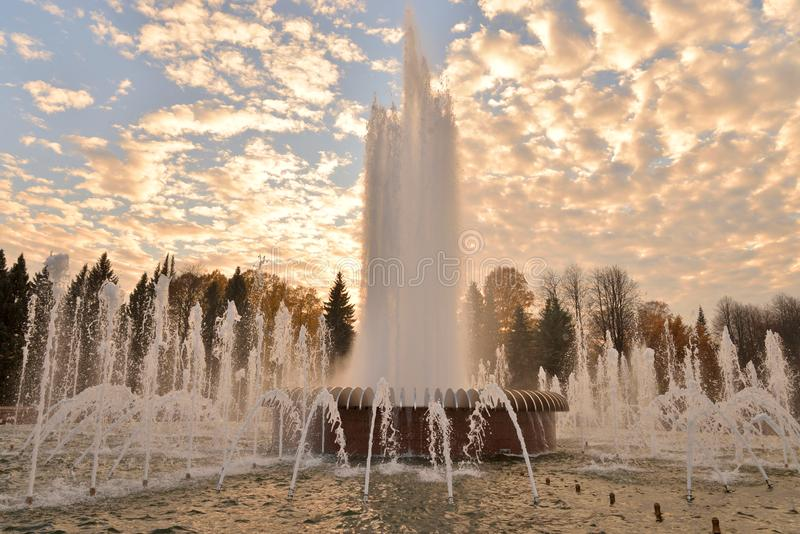The gush of water of a fountain. The gush of water of a fountain in St. Petersburg at sunset, Russia stock photos