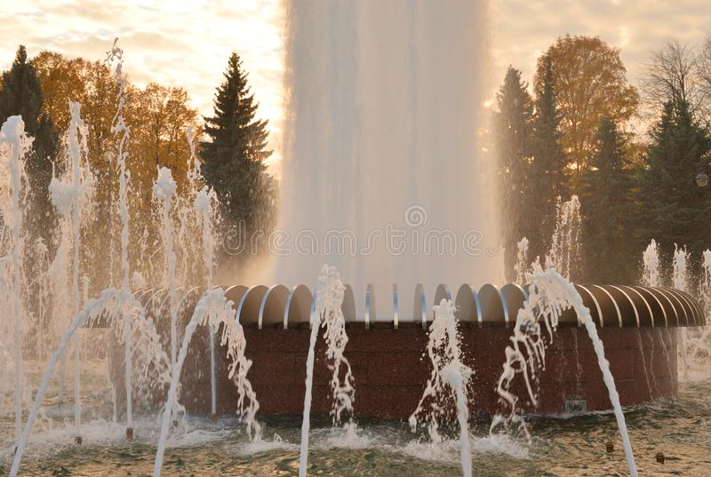 The gush of water of a fountain. The gush of water of a fountain in St. Petersburg at sunset, Russia royalty free stock photo
