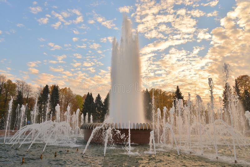 The gush of water of a fountain. The gush of water of a fountain in St. Petersburg at sunset, Russia royalty free stock photos