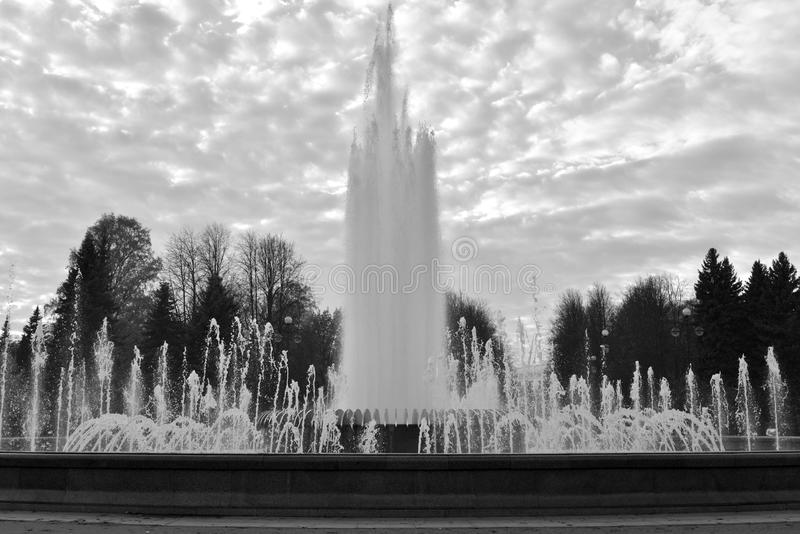 The gush of water of a fountain. The gush of water of a fountain in St. Petersburg at sunset, Russia. Black and white stock image