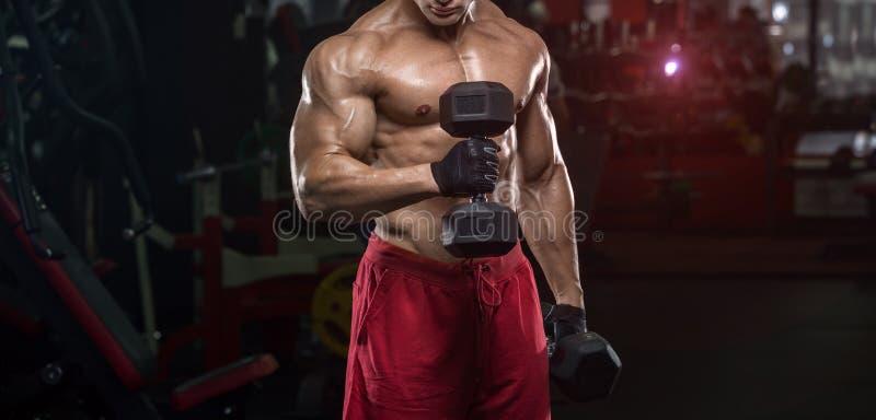 Gut aussehender Mann mit großen Muskelzügen in der Turnhalle, Übungen stockbild