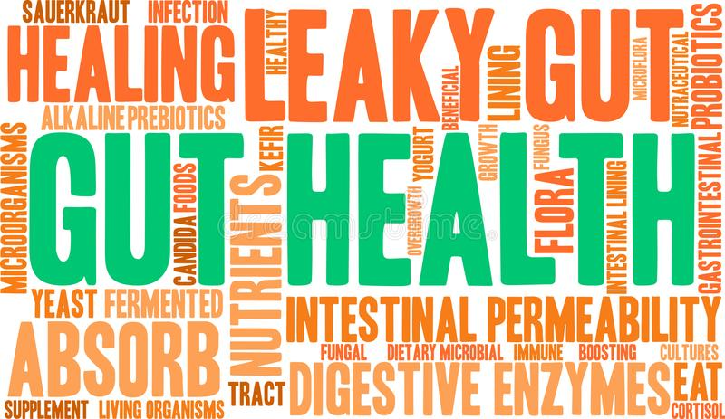 Gut Health Word Cloud. On a white background vector illustration