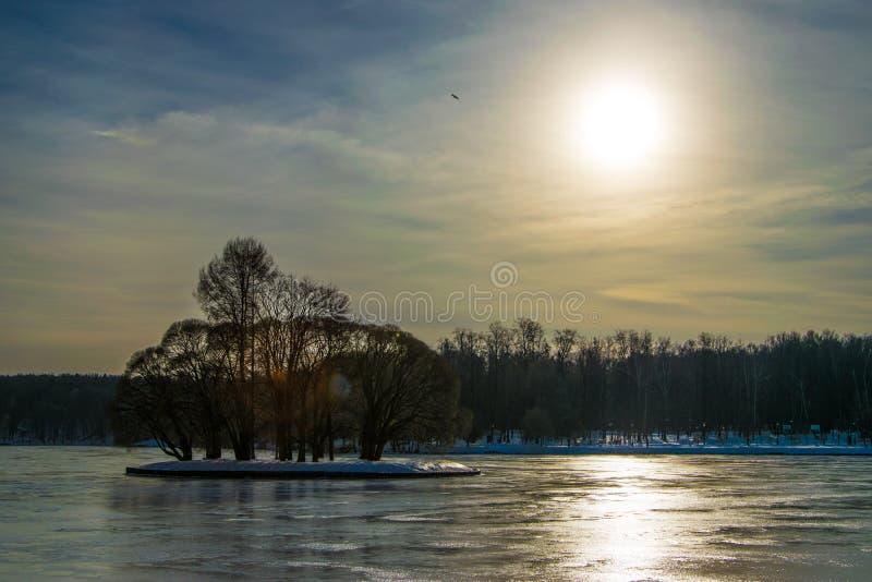 Guter sonniger Wintertag im Park in einem Teich stockfoto