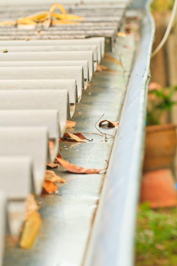 Gutter. Home maintenance: Leaves in rain gutter stock image