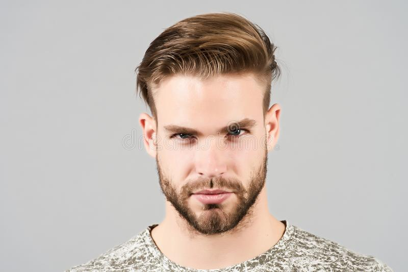 Guy with bearded face, stylish hair, haircut, barber salon royalty free stock image