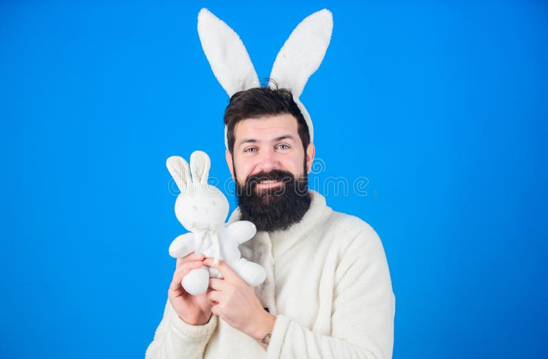 Guy bearded hipster cute gentle bunny long ears blue background. Respect for traditions. Easter bunny. Man wearing bunny stock images