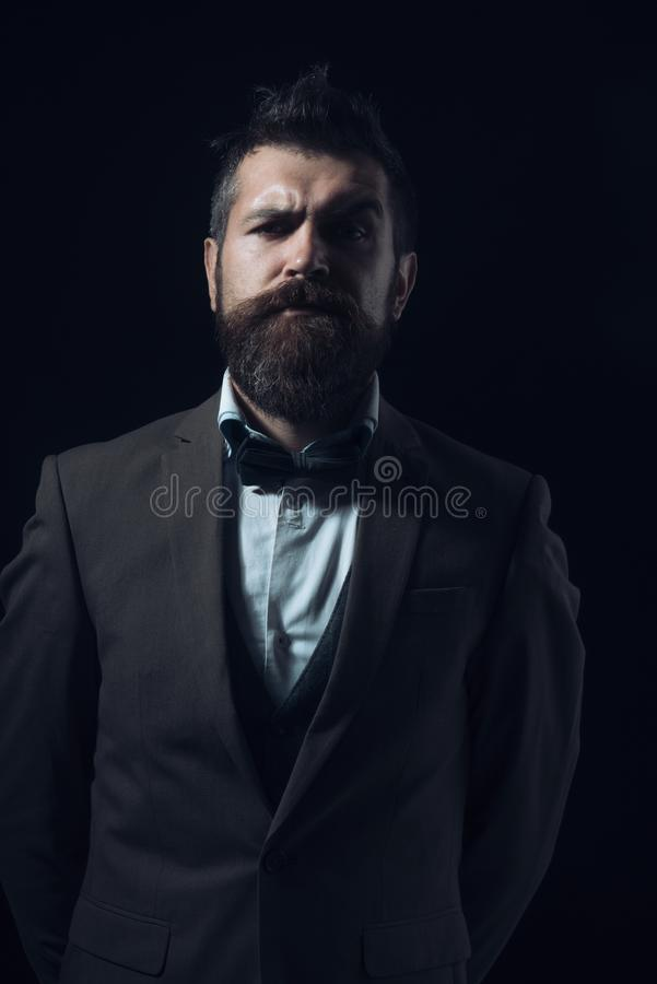 Guy with concentrated face in luxury suit with bow tie. royalty free stock images