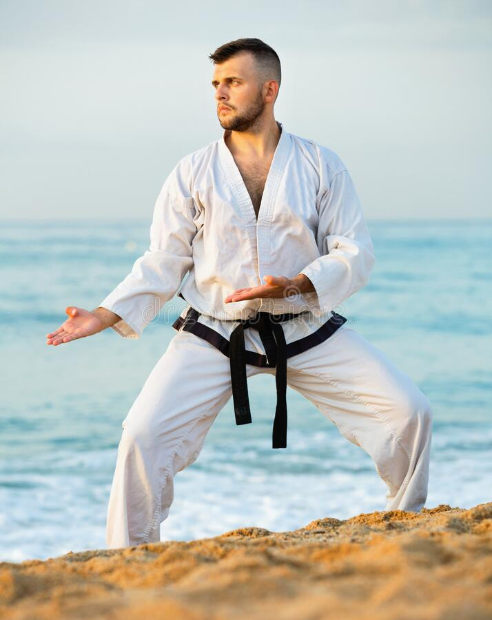 Free Guy Doing Karate Poses At Sunset Sea Shore Stock Photography - 216365502