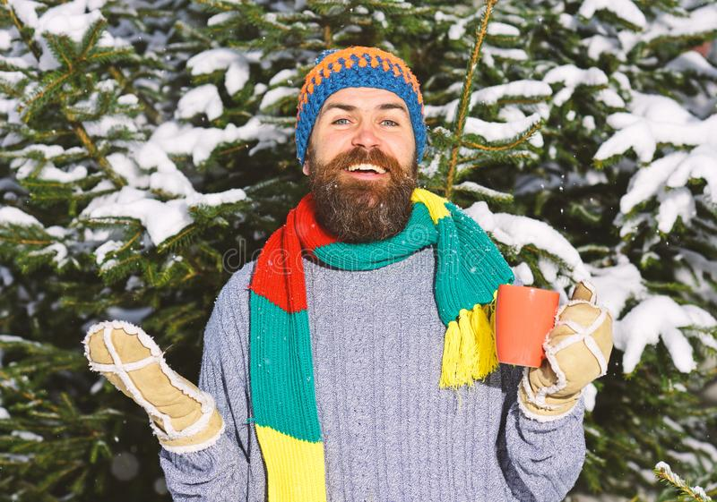 Guy with firtrees covered with snow on background. Man wears knitted hat, scarf and gloves with happy face. Warming drinks concept. Macho with beard and stock images
