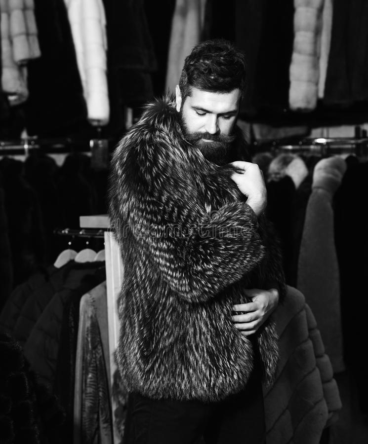 Guy in furry coat in shop with fur on background. Guy in purple furry coat in shop with fur on background. Winter clothing concept. Man with beard and mustache royalty free stock image