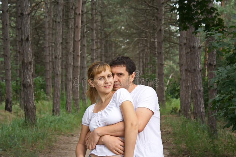Guy and the girl on the background of ancient pines royalty free stock photography