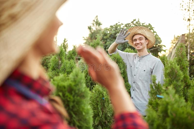Guy and girl gardeners wave to each other in the nursery-garden on a warm sunny day stock images