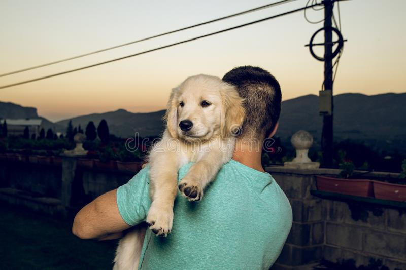 Guy with his kissing his puppy dog stock images