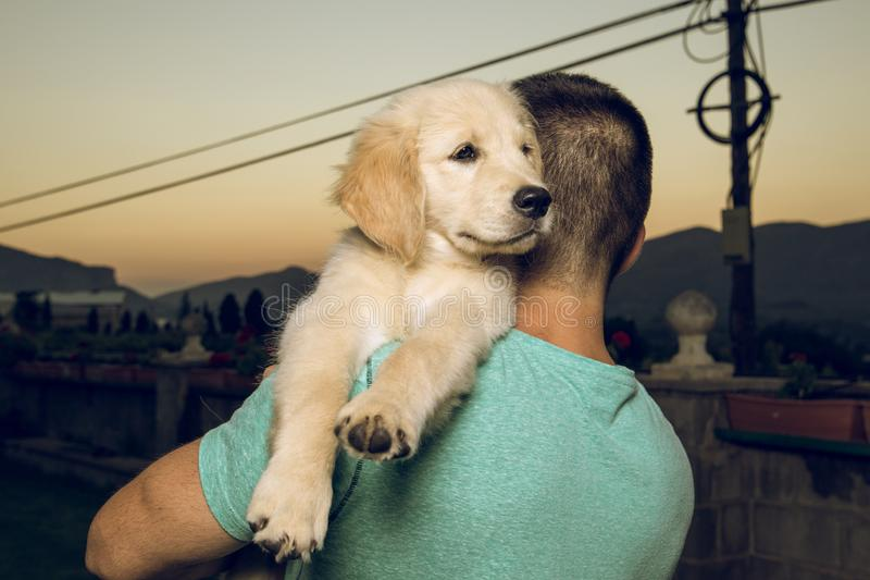 Guy with his kissing his puppy dog royalty free stock image