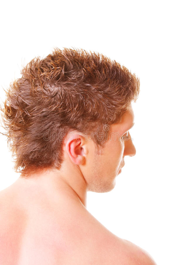 Download Guy rear view stock photo. Image of male, head, vertical - 12126532