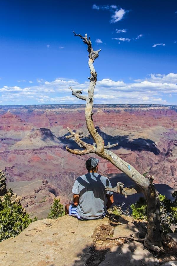 Guy Sitting novo na borda de Grand Canyon foto de stock royalty free