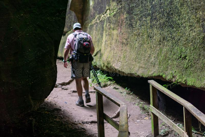 Guy Walking Down Wood Path na garganta musgoso imagens de stock