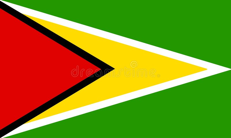 Guyana vector illustration