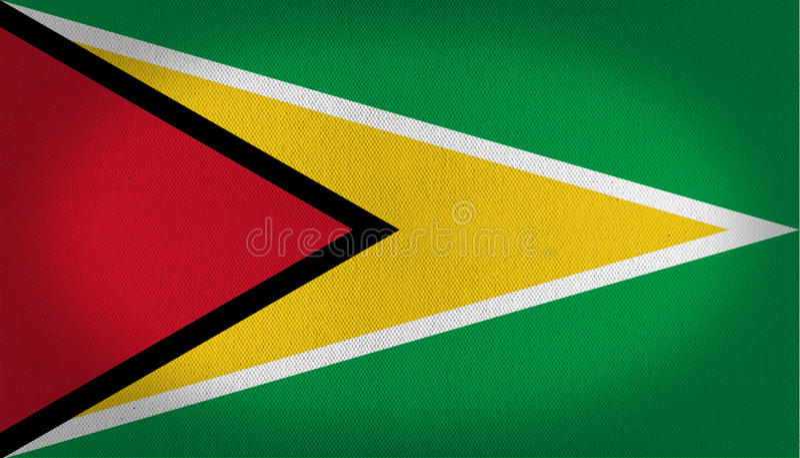 Guyana-Flagge vektor abbildung