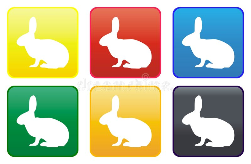 guzika królika sieć