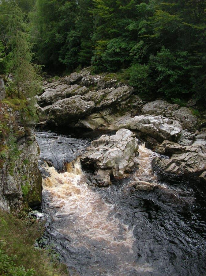 Gwałtowni i ciemny bursztyn coloured nawadniają Findhorn Rzecznego przy Randolphs skokiem, Morayshire, Szkocja, UK fotografia royalty free