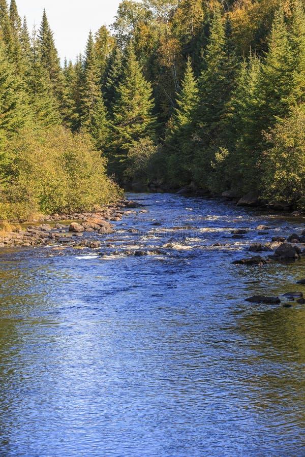 Gwałtowni na rivière Du Diable w Mont Tremblant Nationalpark zdjęcia royalty free