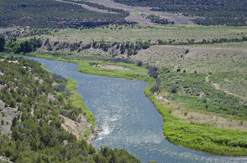 Gwałtowni płynie na zielonej rzece zdjęcia stock