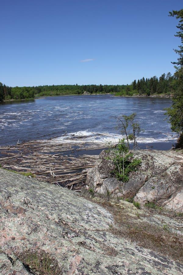 Gwałtowni przy Wabigoon rzeką, Ontario zdjęcie royalty free