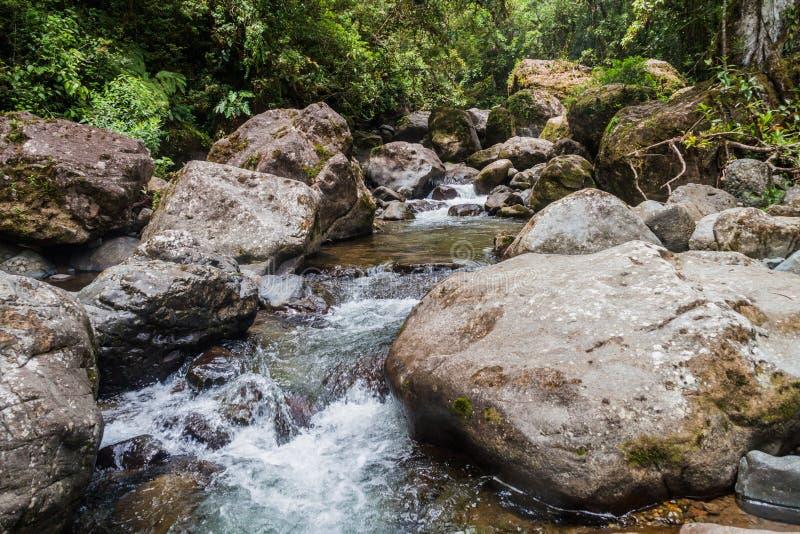 Gwałtowni Rio Hornito rzeka w Pan obraz stock