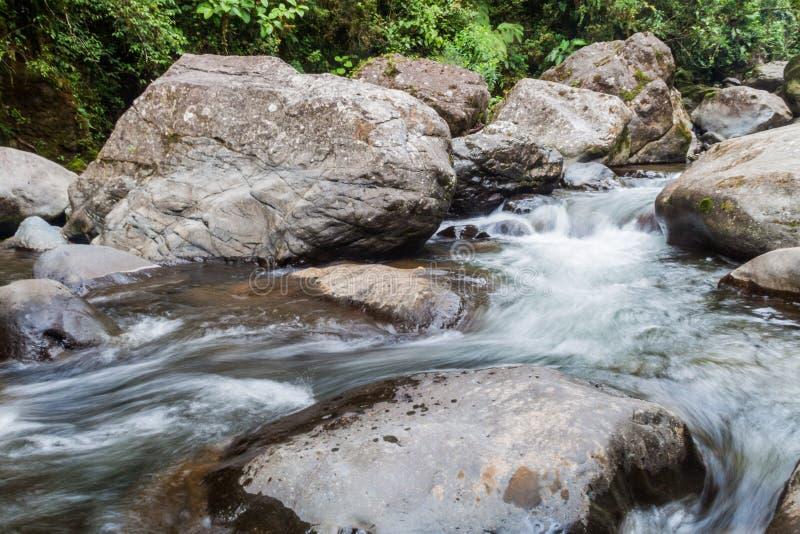 Gwałtowni Rio Hornito rzeka w Pan zdjęcia royalty free