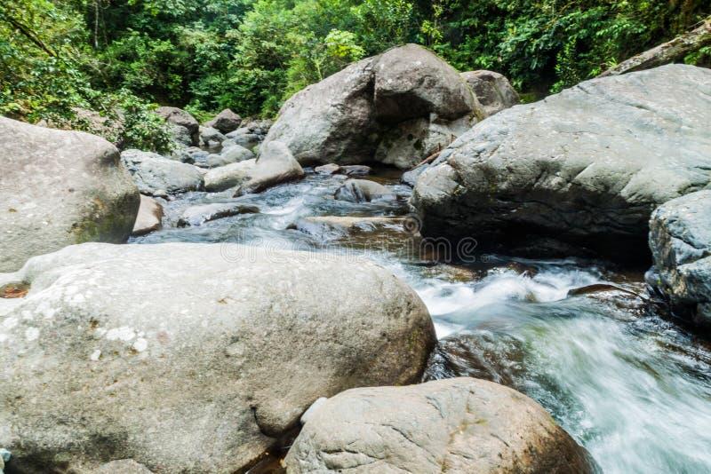 Gwałtowni Rio Hornito rzeka w Pan obraz royalty free