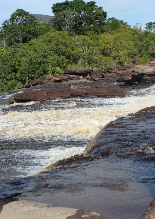Gwałtowni rzeka w amazonce obrazy royalty free