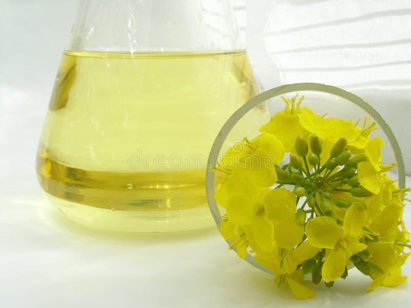 Download Gwałt oleju zdjęcie stock. Obraz złożonej z cholesterol - 126774