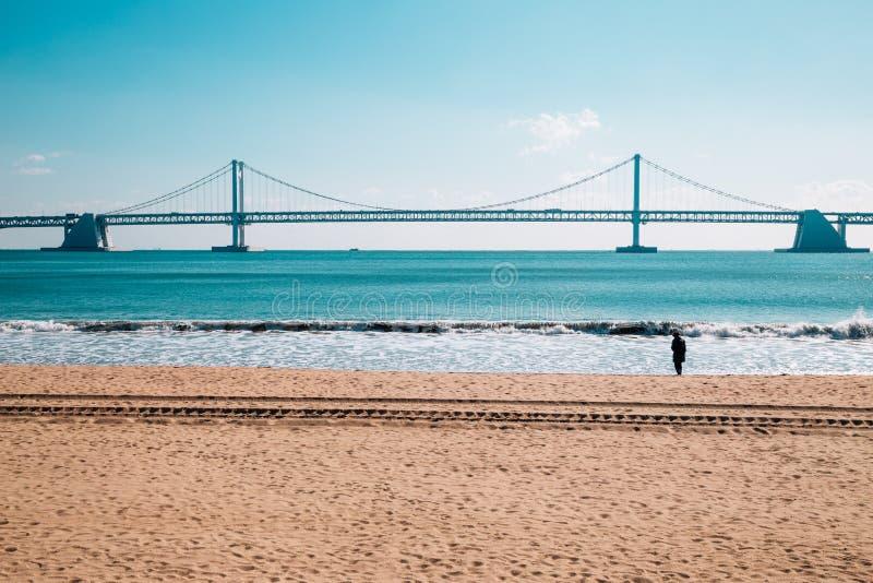 Gwangan bridge with beach in Busan, Korea. Asia stock image