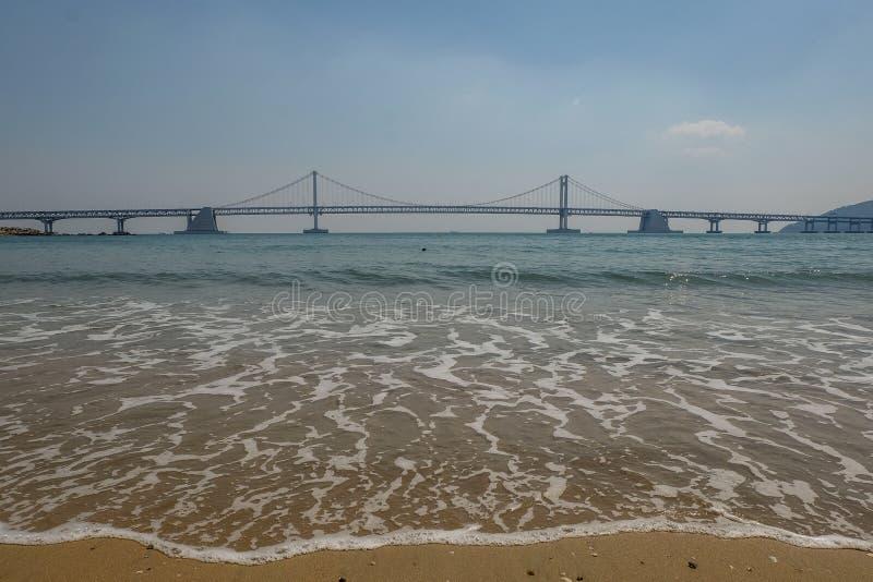 Gwangan bridge. Busan Gwangan bridge taken from Gwangalli beach in brightday with blue sky stock photo