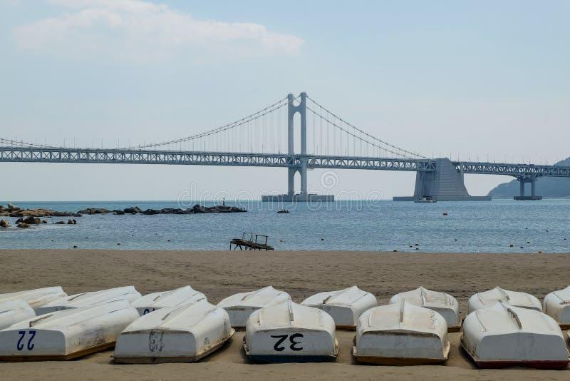 Gwangan bridge. Busan Gwangan bridge taken from Gwangalli beach in brightday with blue sky and many boats on the beach royalty free stock photos