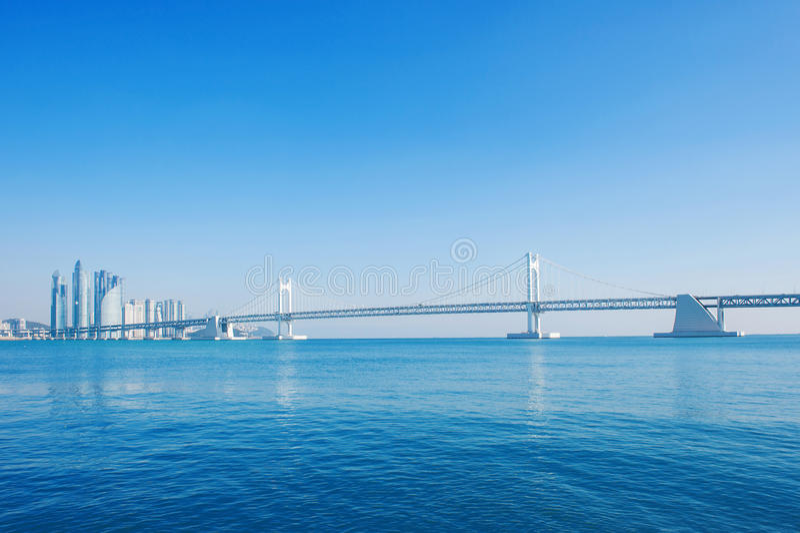 Gwangan bro och hastighetsfartyg i Busan royaltyfria foton