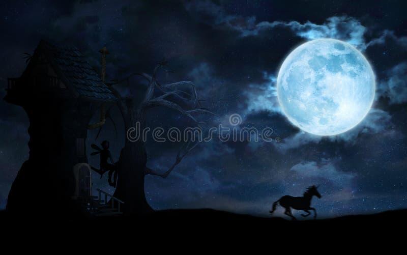 Gwiaździsta noc z księżyc, czarodziejką i jednorożec, royalty ilustracja