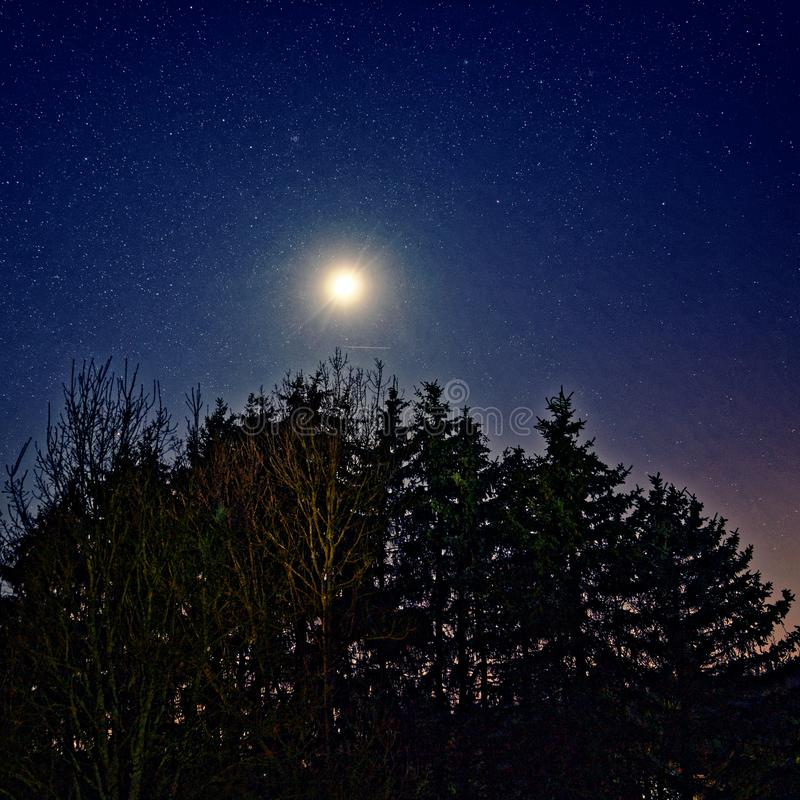 Gwiaździste niebo i jasny księżyc nad lasem przez ciemnoniebieską noc zdjęcia stock