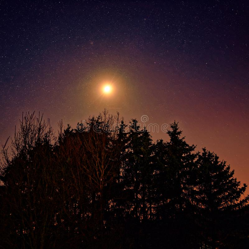 Gwiaździste niebo i jasny księżyc nad lasem przez ogniste nocne niebo obrazy royalty free