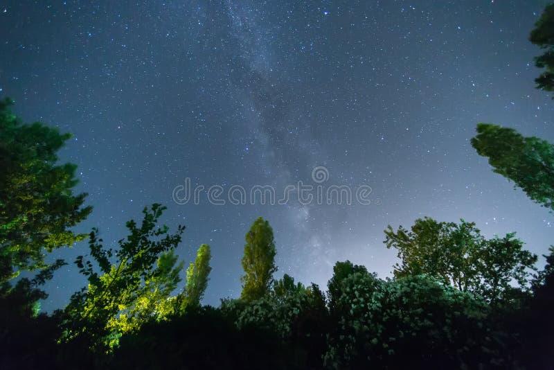 Gwiaździsty niebo i Milky sposób obraz royalty free