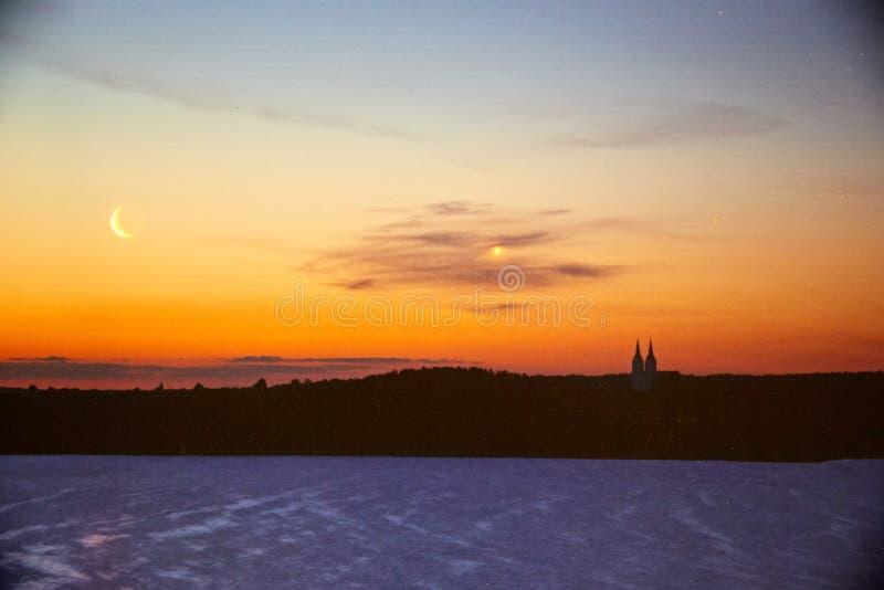 Gwiaździsty nocne niebo w lesie zdjęcie royalty free