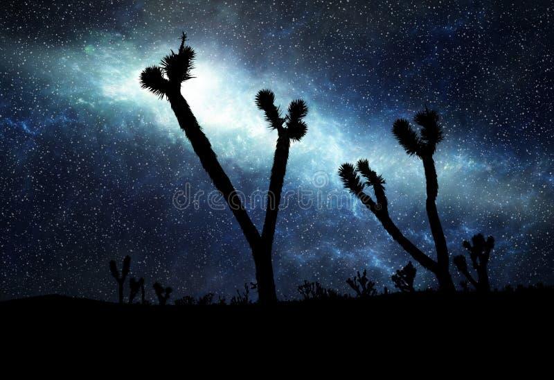 gwiaździsty sylwetki pustynny ilustracyjny niebo ilustracja wektor