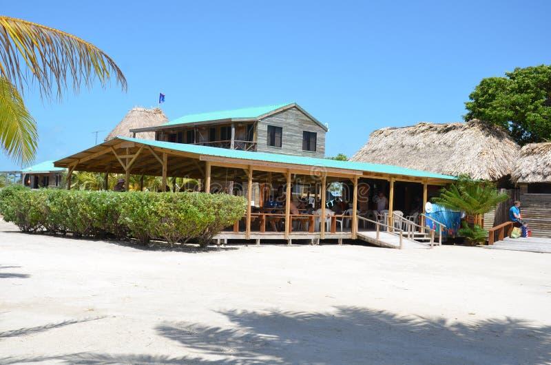 Gwiazdowa Rybia wyspa, Belize zdjęcia stock
