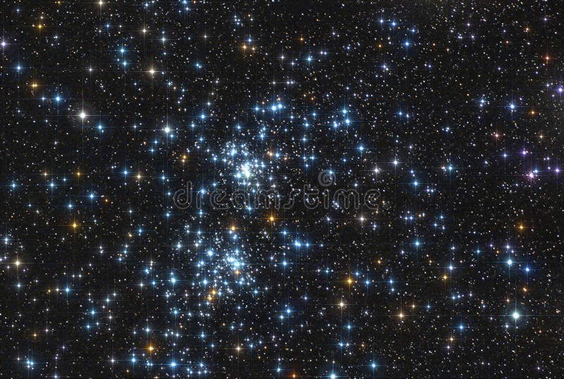 Download Gwiazdowy dwoisty grono zdjęcie stock. Obraz złożonej z kolce - 33152250