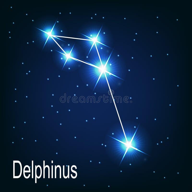 Gwiazdozbioru Delphinus gwiazda w nocy ilustracja wektor